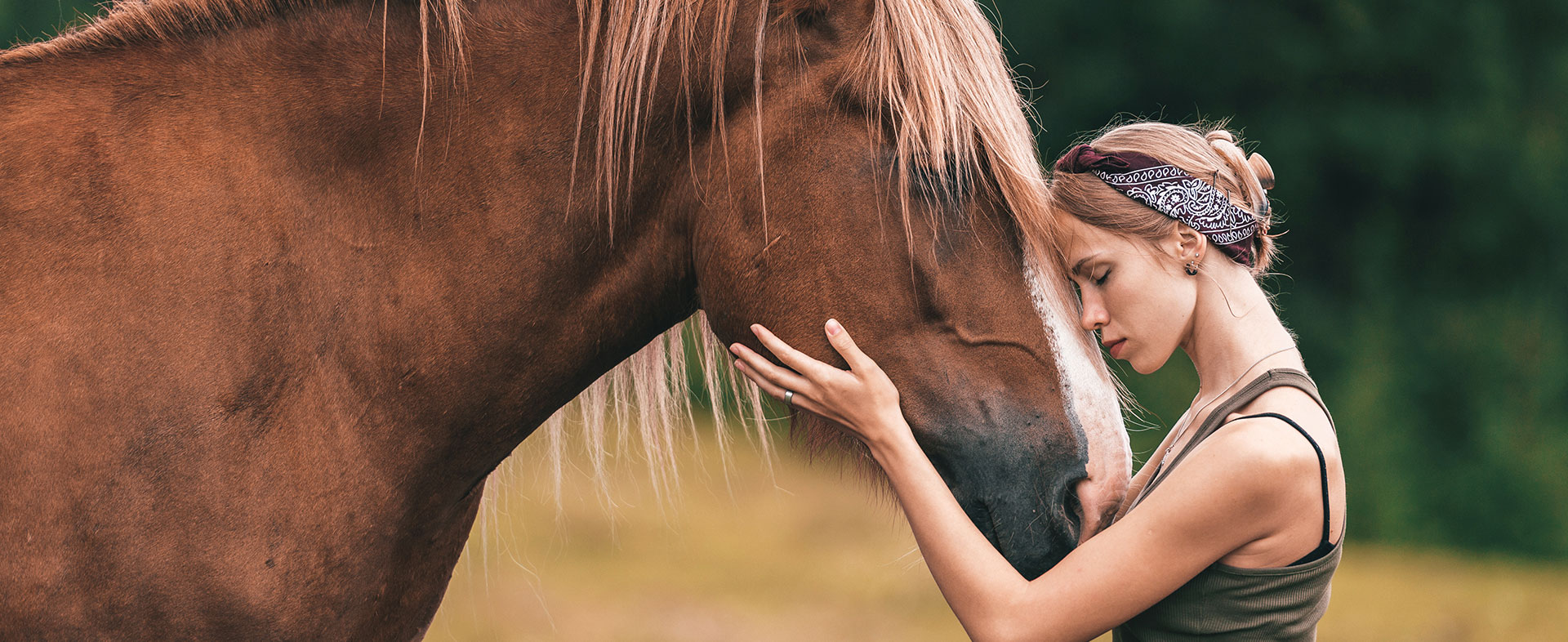 Communication intuitive animale Bas Rhin : Cheval