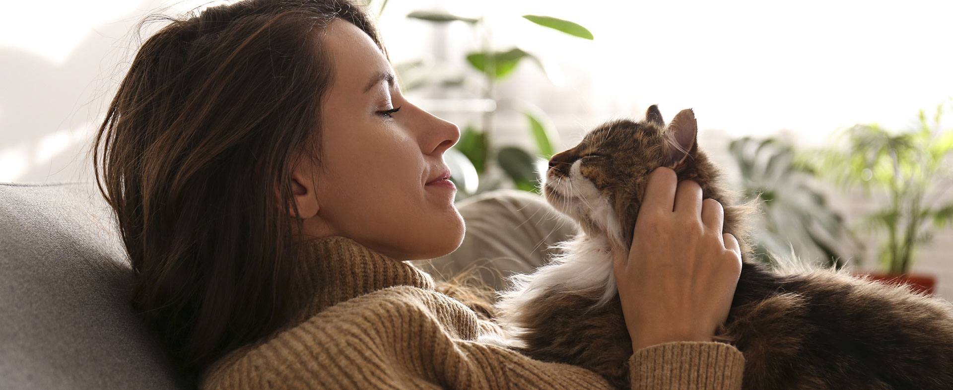 Communication intuitive animale Bas Rhin : Chat